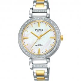 WATCH PULSAR BUSINESS PY5049X1