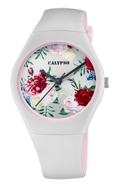 WATCH CALYPSO K5791/1