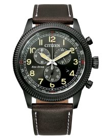 WATCH citizen of collection AT2465-18E
